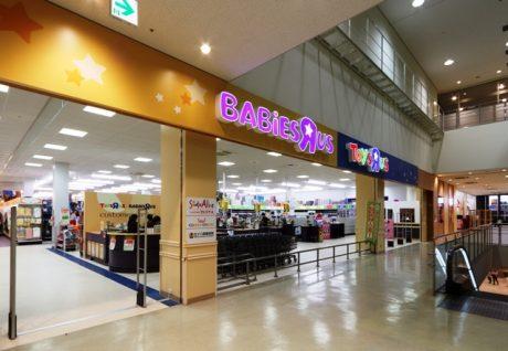 横浜いずみ店の写真